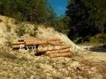 Незаконна сеч на 187 дървета установиха в местност край село Войкова лъка