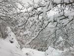 Около 30-35 см е снежната покривка в най-високото рудоземско село