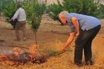 Солидни глоби за палене на огън при почистване на имоти