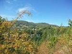 Щрихи от село Поляна