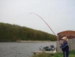 От днес до края на май е забранен любителският риболов-само на две места в областта няма забрана