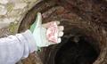 Продължават случаите на отровени кучета в Чепинци