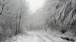 Сняг вали в общината