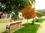 Шарена есен в Рудозем