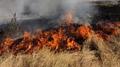 """РД """"ПБЗН"""": 55 произшествия възникнаха през изминалия месец в Смолянско"""