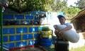 С игри на открито продължават летните забавления за хлапетата в Чепинци