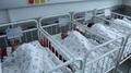 33 новородени проплакаха в общината през първото шестмесечие на настоящата година