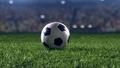 Голям интерес към футболния турнир за 10-годишни в Рудозем