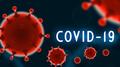 18 заразени с COVID-19  до този момент в Рудозем