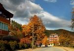 Златна есен в Рудозем
