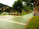 Свежа рудоземска есен