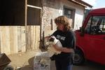 Американка плати близо 5000 долара за улично куче от Рудозем