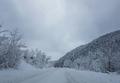 Снежната покривка по високите места в общината вече достига до 70 см.